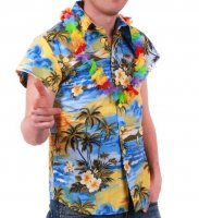 Hawaiihemd Hawaiishirt hellblau in L Beachparty Outfit